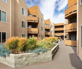 Encino Palms, Phillips Graduate Institute, CA