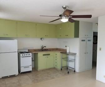 Kitchen, 1533 Nehoa St Apt 12A