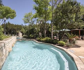 Pool, Vineyard Springs