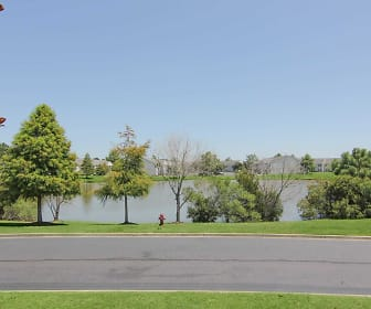 Lake, Ivystone at Palmetto Pointe