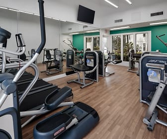 workout area featuring hardwood floors and TV, The Braxton