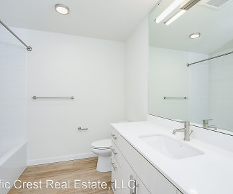 Fremont 1 Bedroom Apartments For Rent Seattle Wa 102 Rentals