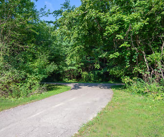 Nemoke Trails, 48840, MI