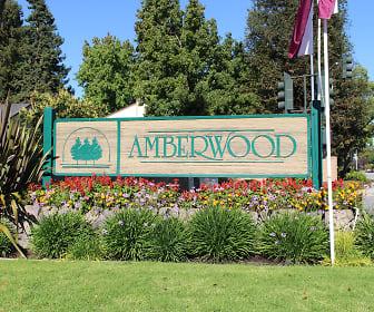 Amberwood Apartments, 95131, CA