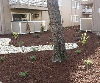 Landscaping, Central Park Apartments