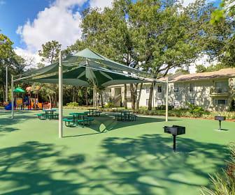The Grove, Springs, Lake Magdalene, FL