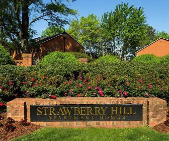 Strawberry Hill, Charlotte, NC