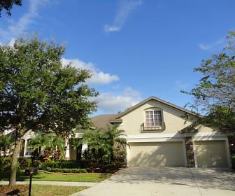 6134 Ibispark Drive, Lithia, FL