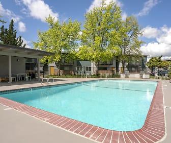 Pool, Renew Park Viva