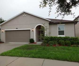 11625 Tangle Stone Drive, 33534, FL