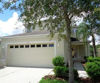 15407 Telford Spring Drive, 33598, FL