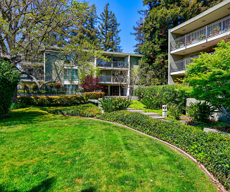 One Three Four Elm, North Central San Mateo, San Mateo, CA