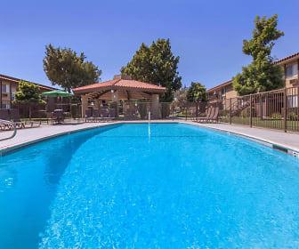 Pool, Arbor Court Apartment Homes