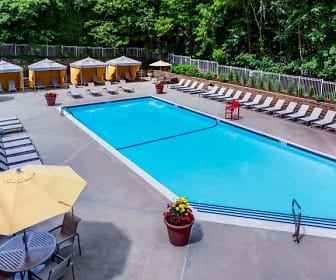 Pool, The Henry