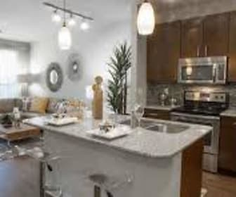 Kitchen, 77379 Luxury Properties