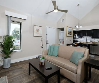 Fusion Orlando, Sand Lake Private Residences, Doctor Phillips, FL