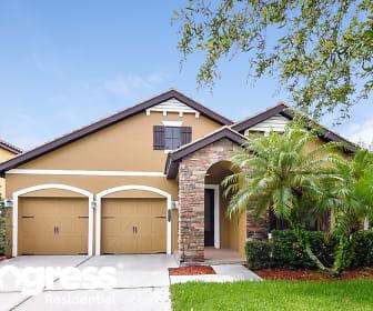 20355 Chestnut Grove Dr, Grand Hampton, Tampa, FL