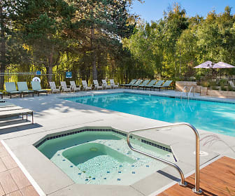Pool, Lighthouse Apartments
