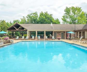 Pool, The Paddock Club Murfreesboro