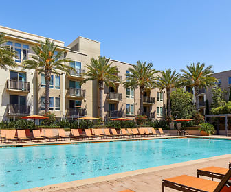 Apartments for Rent in San Jose, CA - 1807 Rentals ...