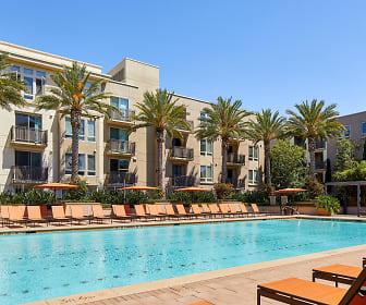Apartments for Rent in San Jose, CA - 1807 Rentals ...