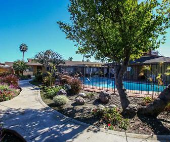Pool, Huntington Gardens