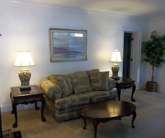 Living Room, 516 Milledge Terrace