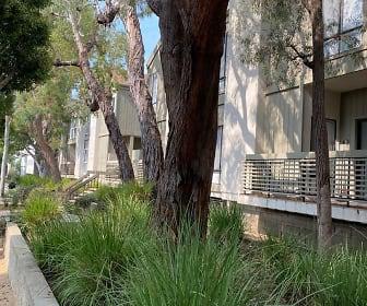 2909 Arizona Avenue, Unit #6, Pacific Palisades, CA