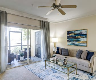 Apartments for Rent in St Petersburg College, FL - 133 ...