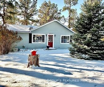6825 Swan Rd, Black Forest, CO