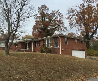 303 Wygoda Circle, South Cleveland, TN