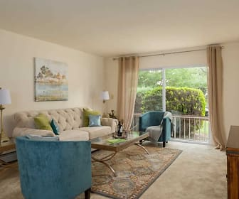 carpeted living room with natural light and baseboard radiator, Mansfield Village Apartments