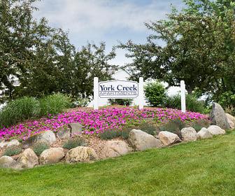 York Creek, Comstock Park, MI