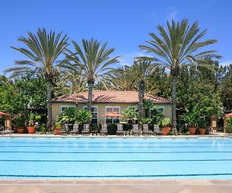 Pool, Serrano
