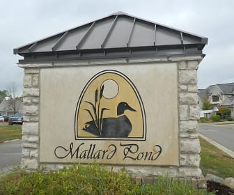 Mallard Pond Apartments, 48855, MI