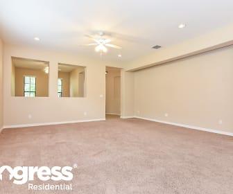 Living Room, 20355 Chestnut Grove Dr