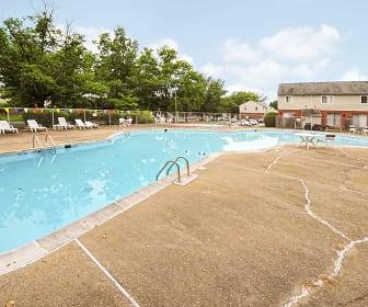 Pool, Williamsburg Park Apartments