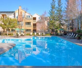 Pool, Avalon Fremont