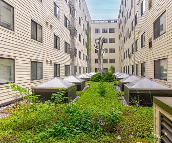 3Tree Flats, Northwest Washington, Washington, DC
