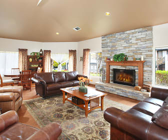 Living Room, Alpine Woods
