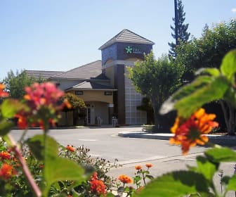 Furnished Studio - Sacramento - South Natomas, Sacramento, CA