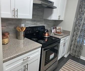 Kitchen, Elite at City View