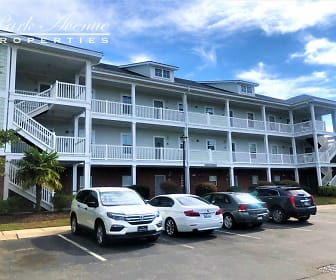 701 Salleyport Dr Unit 1115, Myrtle Beach, SC