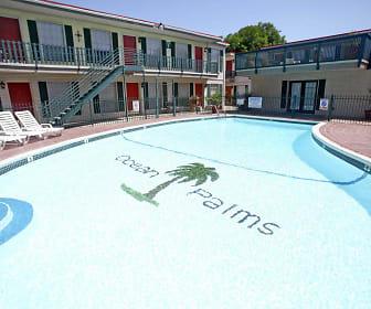 Pool, Ocean Palms