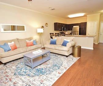 Living Room, Highlands of Grand Pointe