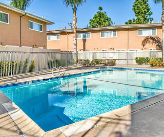 Olive Tree, Central Costa Mesa, Costa Mesa, CA