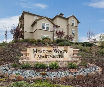 Meadow Wood at Alamo Creek, Danville, CA