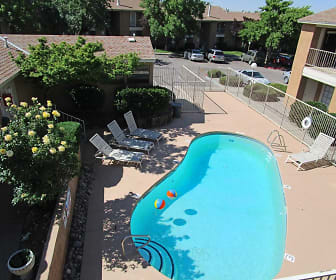 Pool, The Palazzo At Sandia Heights