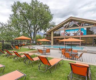 Pool, Springs Of Country Woods