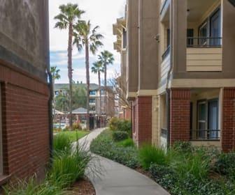 The U, Davis, CA